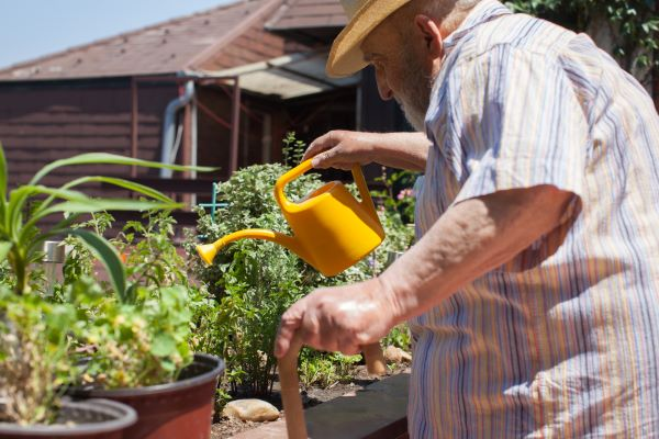 Person watering plants while holding a walking stick