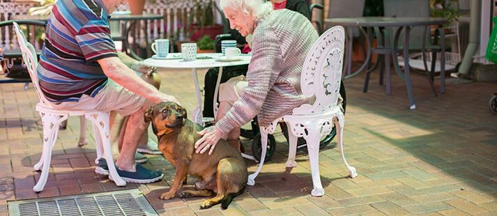 Residents and pets at Bethesda